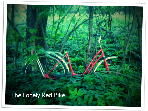 An abandoned red bike against a tree.