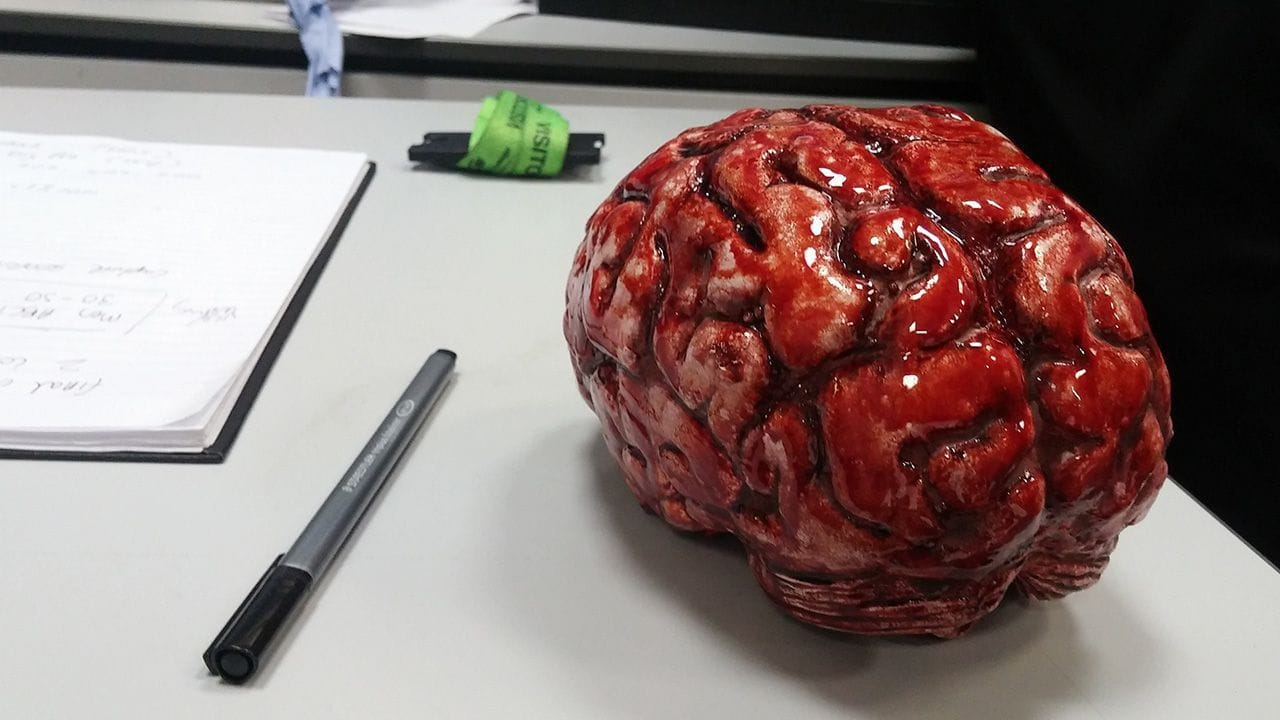 A fake brain covered in theatrical blood.