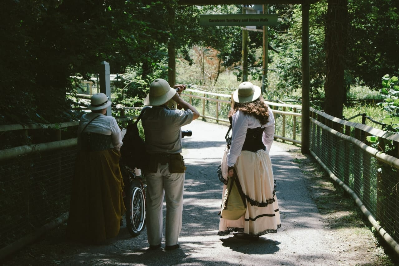 A group of people dressed as Victorian explorers, wandering the wild animal park.
